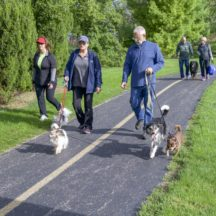 Image from the Mutt Strut event on September 9, 2018