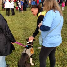 Image from the JDRF Walk Dog Event event on September 30, 2018